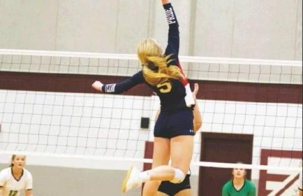 Volleyball takes Area Championship